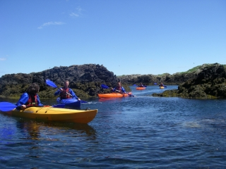 Sea Kayaking, Rhoscolyn Head 4