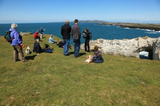 Guided walk, Rhoscolyn